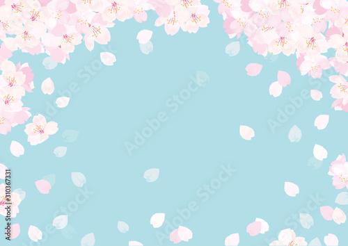 Obraz 桜 背景イラスト - fototapety do salonu