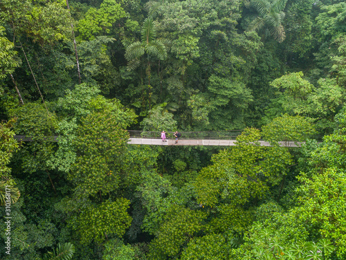 Obraz Couple walking over mystico hanging bridges at La Fortuna rainforest aerial drone view in Costa Rica jungle - fototapety do salonu