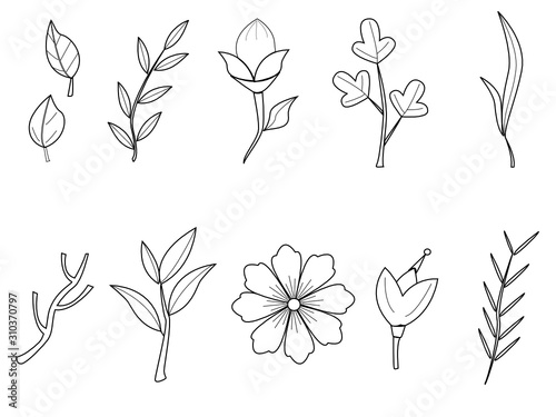 Fototapety, obrazy: Vector set of tropical plant leaves. Line drawing of jungle foliage