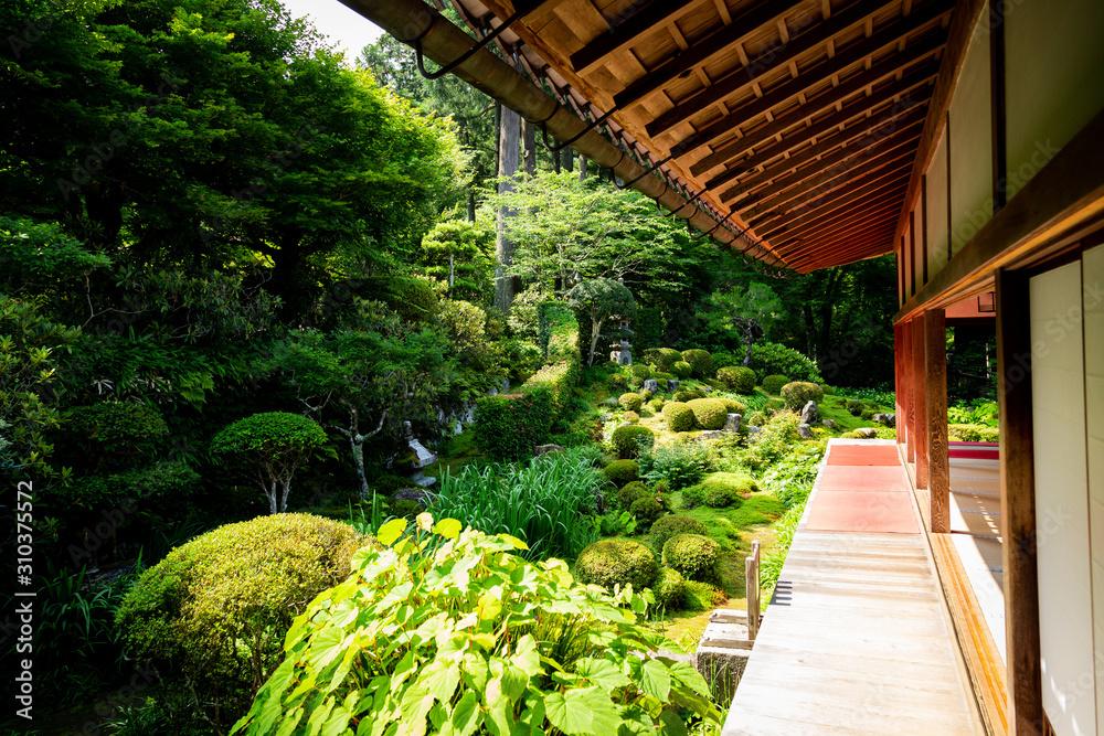 Japan, Ohara, moss temple
