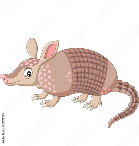 Cartoon armadillo on white background Canvas Print