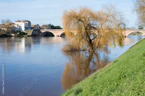 Photo La Dordogne en crue, un saule les pieds dans l'eau
