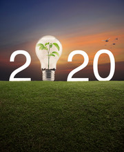 2020 With Light Bulb And Small...