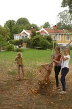 Girls Raking Leaves