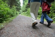 Lowsection Of Couple Walking On Forest Road