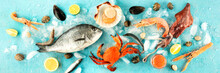 Fish And Seafood Panorama, A F...