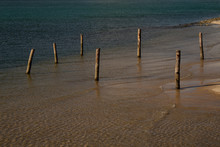 Wooden Piles In The Lake. Wood...