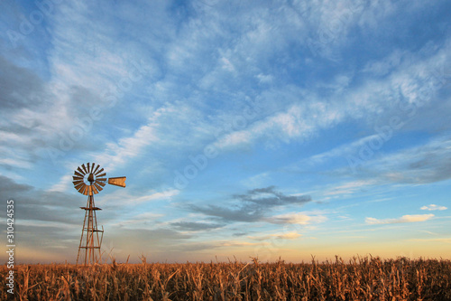 Texas style westernmill windmill at sunset, with a golden colored grain field in the foreground, Argentina