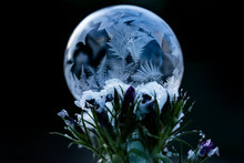 Closeup Of Frozen Soap Bubble In Winter
