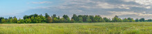 Panorama Of A Large Green Meadow On Cloudy Day