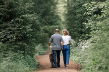 Couple Walking In The Forest With Their Dog, Rear View