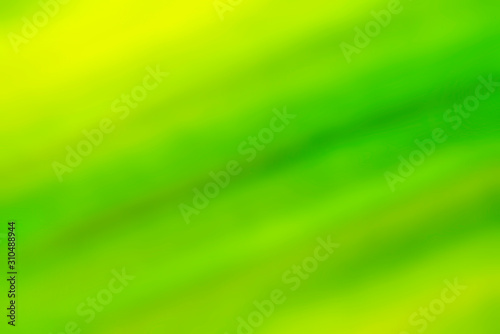 Green gradient background. Defocused blurred nature backdrop. Natural ecology abstract pattern. For design banner, poster - 310488944