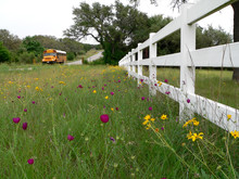School Bus On A Texas Country Road With White Fence And Wild Flowers.