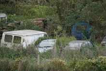 Old Cars In A Junk Yard In The Forest