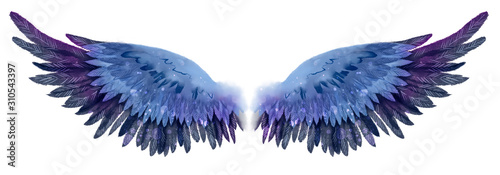 Obraz na plátně Beautiful magic dark blue violet watercolor wings