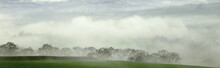Foggy Morning In Axe Valley, E...