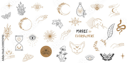 Obraz na plátně Vector witch magic design elements set