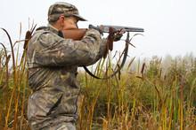 Hunter Aiming A Shotgun Among ...