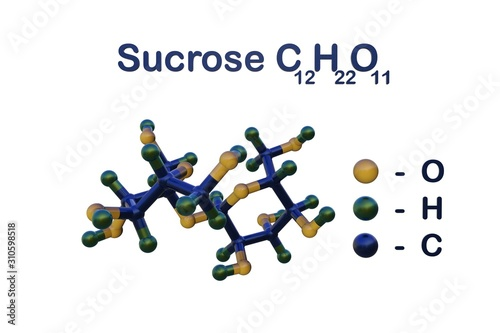 Structural chemical formula and molecular model of sucrose Canvas Print