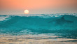 Sunset ocean wave with shark in it, tropical surfing sea background