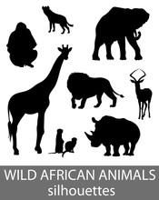 Set Of Wild African Animals Si...