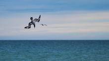 Gannet Juvenile Diving Into Th...