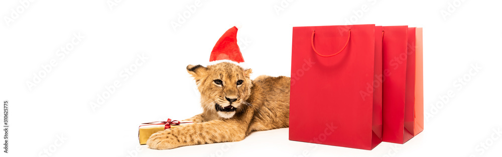 cute lion cub in santa hat near golden gift and red shopping bags isolated on white, panoramic shot