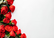 canvas print picture Red roses on white background