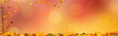 Panorama mit Herbstlaub mit bokeh und unscharfen hintergrund in herbststimmung Canvas Print