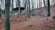 Rezerwat Przyrody Kamień-Grzyb – Rezerwat Przyrody Nieożywionej W Województwie Małopolskim W Okolicach Nowego Wiśnicza