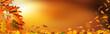 Panorama mit Herbstlaub mit bokeh und unscharfem Hintergrund in der Herbststimmung