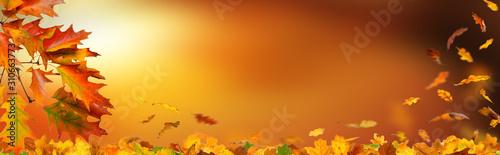 Panorama mit Herbstlaub mit bokeh und unscharfem Hintergrund in der Herbststimmu Wallpaper Mural