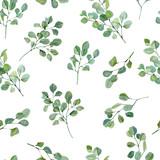 Zieleń akwarela bezszwowe wzór ręcznie malowane srebrny Dolar eukaliptusa. Natura ekologiczne gałęzie i liście. Zielona ilustracja do pakowania papieru, tkaniny, rustykalne tapety tło. - 310669383