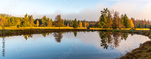 Trees reflected in the pond Canvas Print