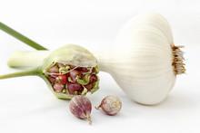 Wild Garlic, Allium Ursinum, I...