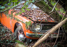Old Wrecked Car Crashed In The Forest
