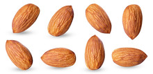 Almond Raw Piece Collection Set.almond Full Macro Shoot .nuts Healthy Food Ingredient On White Isolated .Clipping Path