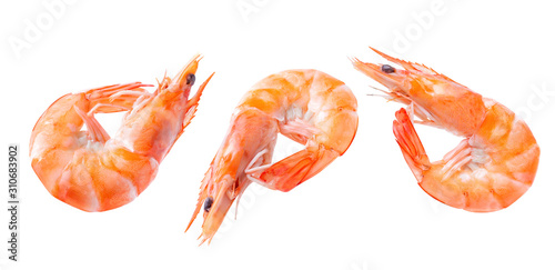 Canvastavla Boiled shrimp isolated on white isolated Collection