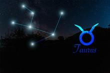 Dark Landscape With Night Star...