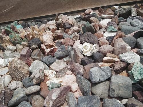 Fotomural Minerales prehistóricos