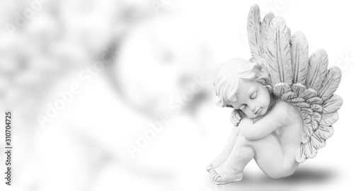 Dreaming angel, isolated on white, panorama