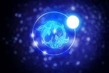 Astrology Sign Pisces Against Starry Sky