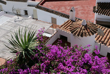 View On Roofs And Roof Terrace...