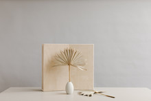 Modern Dried Palm Leaves Against Plywood Background