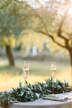 Table For Two Setup In A Olive Plantation Decorated With Olive Tree Branches