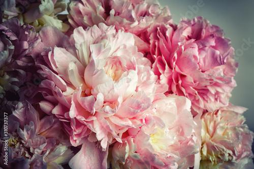 Fotografie, Obraz Fluffy pink peonies flowers background