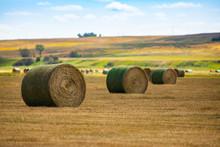 Three Round Bales Of Hay Wrapp...