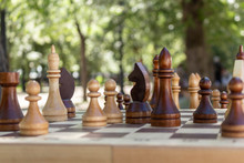 Chess Is Placed On The Board. ...