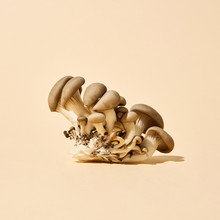A Group Of Large And Small Mushrooms On A Beige Background With Space For Text. Healthy Diet Food