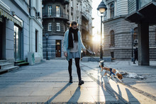 Woman Walking A Dog In The City
